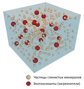 хреакция1-1